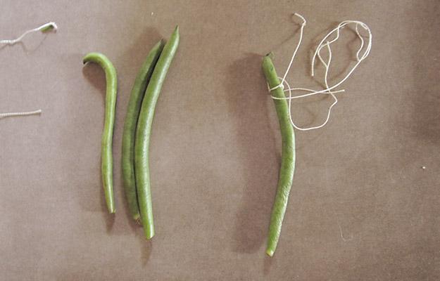greenbeans3