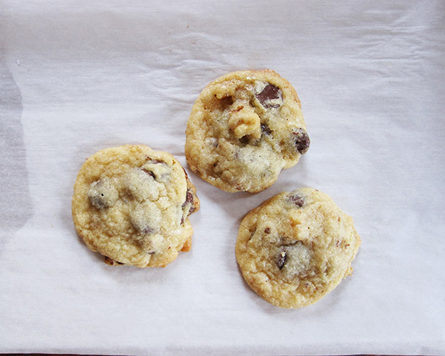 chocolatechipcookie4