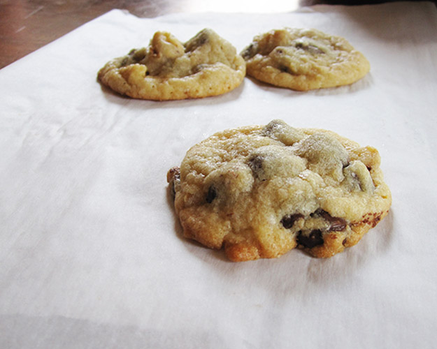 chocolatechipcookie5