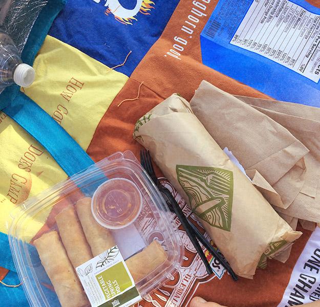 picnicstrategy3