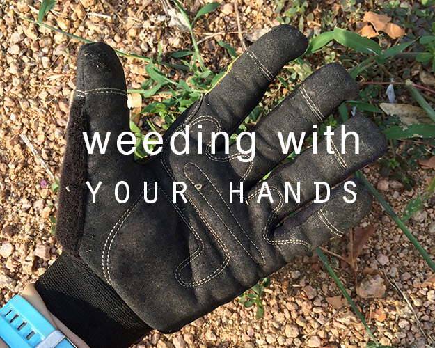 pulling weeds with your hands